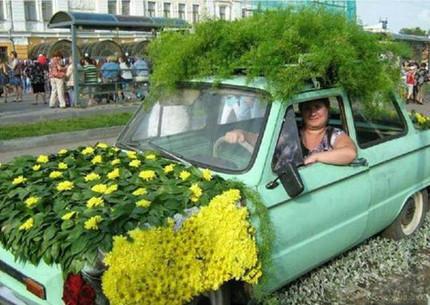 这是一辆爱绿化的车子