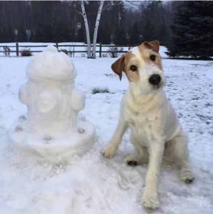 主银,你看偶堆得雪人怎么样